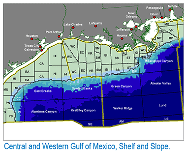 Offshore Gulf Coast CO2-EOR and Pipeline Infrastructure Model Petroleum Engineering Software Application