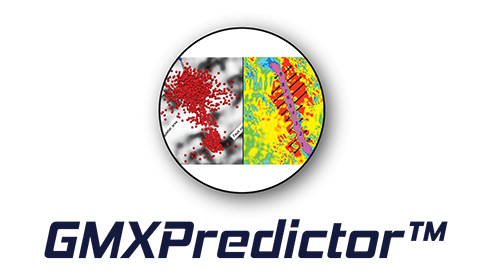 GMXPredictor™ Petroleum Engineering Software Application