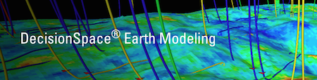 DecisionSpace® Earth Modeling Petroleum Engineering Software Application