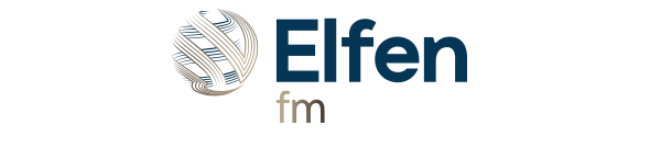 Elfen fm Petroleum Engineering Software Application
