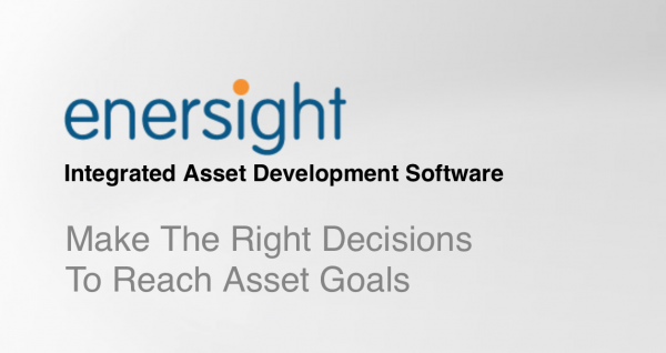enersight™ Petroleum Engineering Software Application