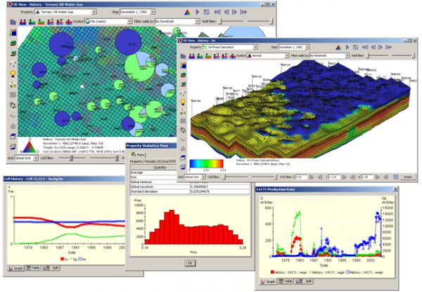 Roxar Tempest VIEW Petroleum Engineering Software Application