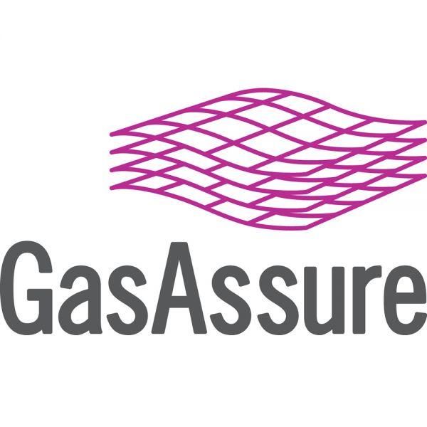 GasAssure Petroleum Engineering Software Application