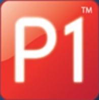 P1 Petroleum Engineering Software Application