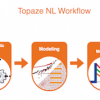 Topaze NL Petroleum Engineering Software Application