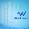 Well-Insight™ Petroleum Engineering Software Application